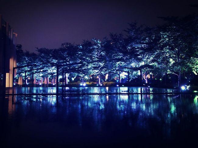 Reflection Tokyo Night Rain Reflection Night Lights
