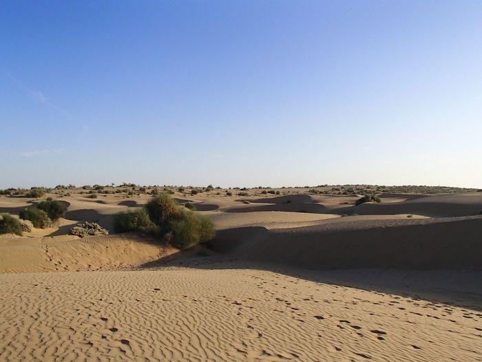 Désert du Thar Sand Dunes Rajasthan Thar Desert EyeEmNewHere Land Sky Sand Scenics - Nature Tranquility Clear Sky Tranquil Scene Desert The Great Outdoors - 2018 EyeEm Awards