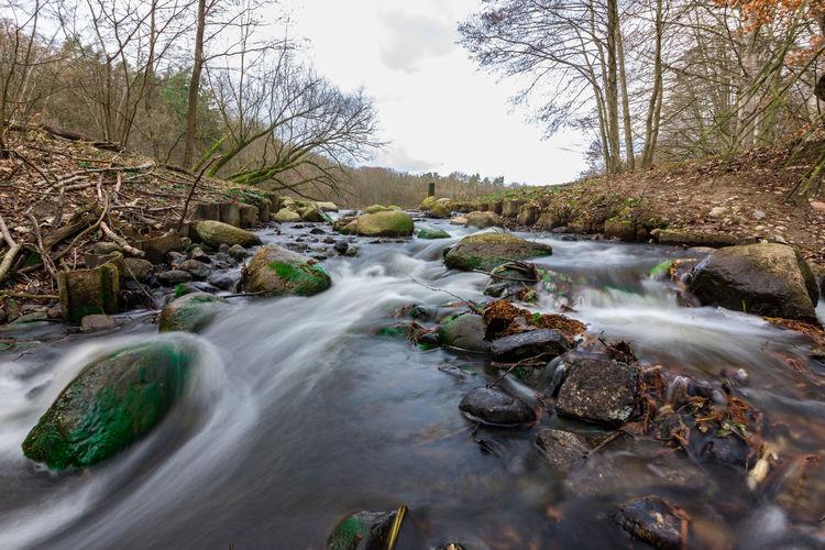 Stream flowing through rocks in forest