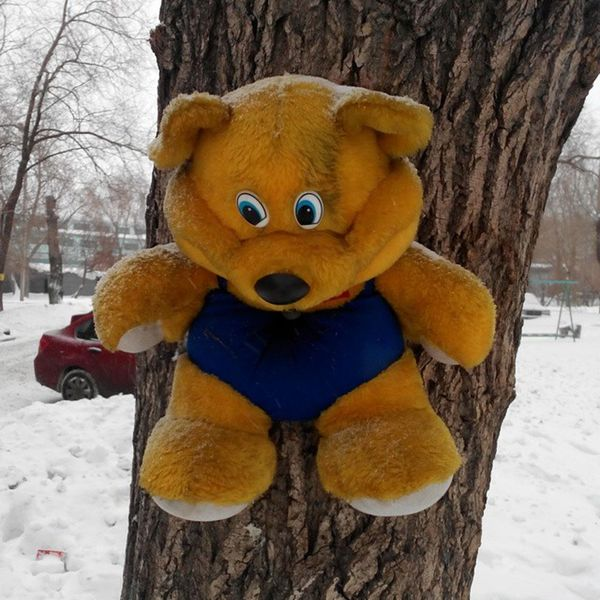 Продолжение истории про жирафа и поросёнка - медведя прибили к дереву омск медведь прибили к дереву садюги приколынашегогородка голгофа Bear Nailed to Tree Sadism Calvary