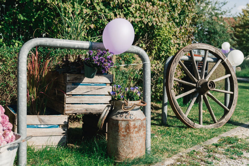 Wedding Decoration Plant Nature Day Wheel Grass Field No People Transportation Growth Flowering Plant Flower Outdoors Land Sunlight Tree Front Or Back Yard Abandoned Cart Mode Of Transportation Wagon Wheel Flower Pot