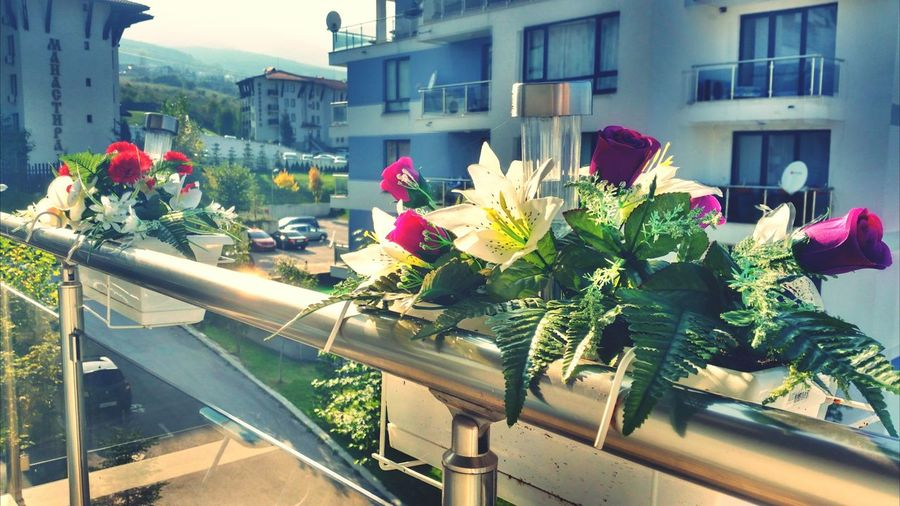 Fake Flowers Balcony View Mountain Condo HDR