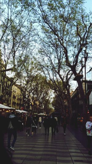 Larambla Walking Street City Barcelona EyeEmNewHere Welcome To Black