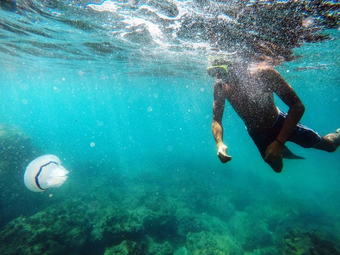 Man snorkeling undersea