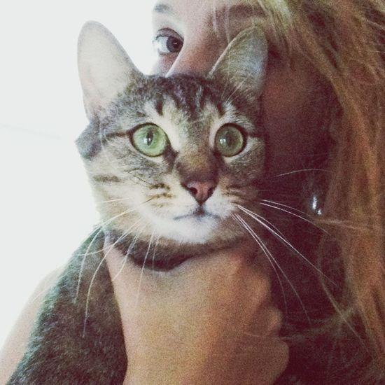 Тусуемся с котей That's Me