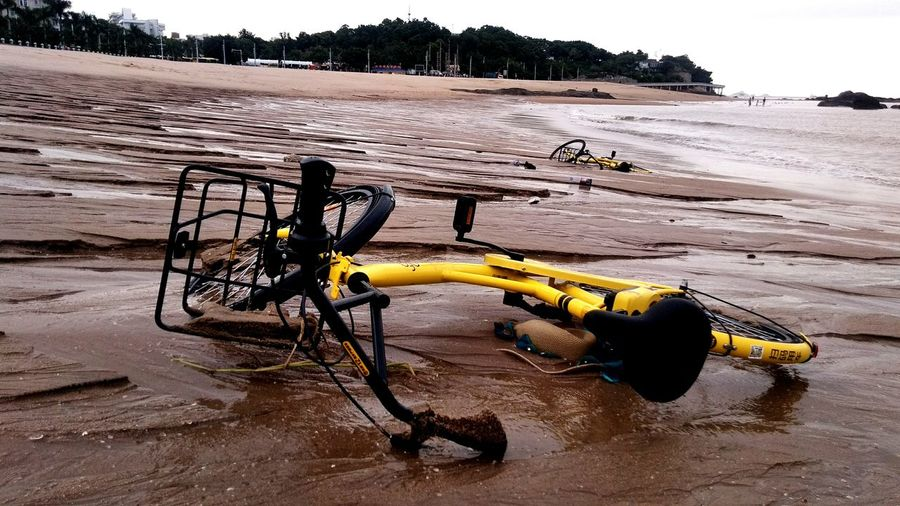 Paint The Town Yellow Sand Beach Bicycle No People Day Water Nature Tree Outdoors Sky