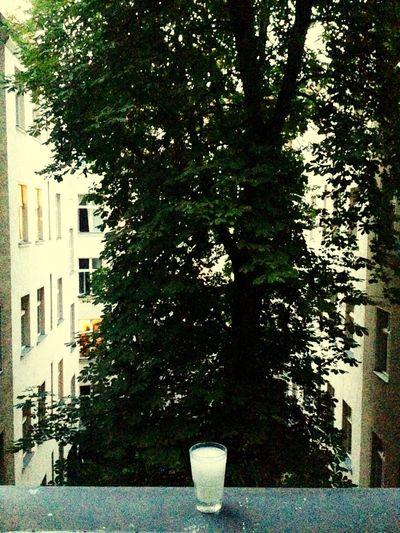 Relaxing Lights My Fuckin Berlin Urban Landscape Drinking Black And White Don't Jump Arak
