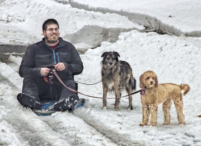 My sons epic sled dog fail. A Dogs Life Winter Epic Fail