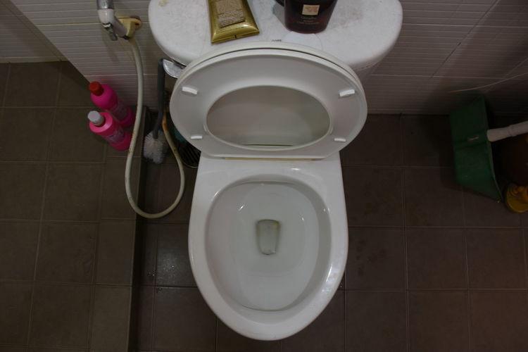 Toilet Restroom Toilet Toilets Toilette Art Flush Toilet Flushing Toilet Toilet Bowl Toilette