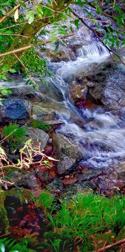 Close-up Waterfall Water Stream Flowing Motion Blur Nature Photography Creekside Trail A Glass Of Lemonade Upahead Morning Light Tranquility Japan Photography InKaratsu