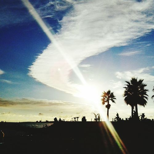 Palma De Mallorca❤ Beachphotography Summer2015 Sunset Silhouettes First Eyeem Photo