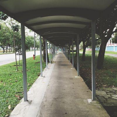 Perspective Walking Around
