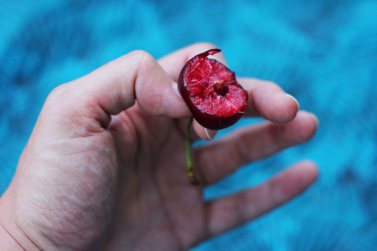 Close-up of hand holding cherry
