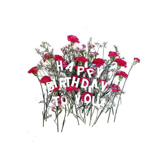 Happy birthday to you Congratulation Birthday White Background Studio Shot Cut Out Red No People White Color Indoors  Text Flowering Plant Flower Creativity Freshness Nature Close-up Pattern Communication Copy Space Leaf Plant