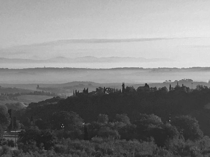 Fine art Nature Tranquility Tuscany
