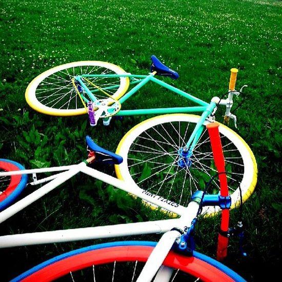 Green Nature Bikes