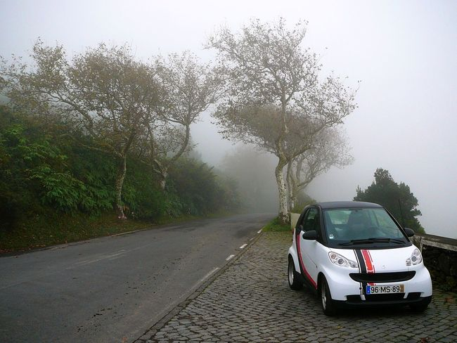 Cloudy Drive ~ Adventure Buddies Azores Beauty In Nature Car Day Fog Foggy Morning Live For The Story Low Clouds Mountain Top Mountain Top View Nature No People Outdoors Rental Road Sharing Precious Moments Sky Smart Car The Great Outdoors - 2017 EyeEm Awards The Street Photographer - 2017 EyeEm Awards The Way Forward Togetherness Transportation Tree
