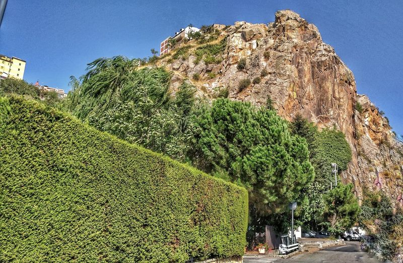 Cesarò. Sicily Sicily Italy Rocks Parete Rocciosa Rocca Parco Dei Nebrodi Nebrodi Park Town Food And Drink Green Trees No People On The Road Building Visiting Tourism Cesarò-nebrodi Cesaro Tree Sky Growing Blooming