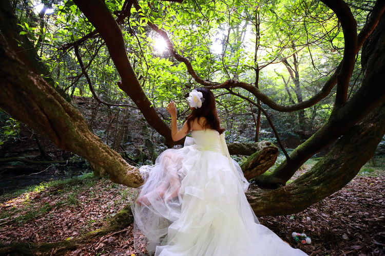 Woman standing on tree trunk in forest