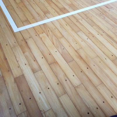 Gymnasium floor 体育館の床 体育館 Gymnasium Floor Gymnasium Full Frame Pattern Textured  Wood - Material Close-up Wooden
