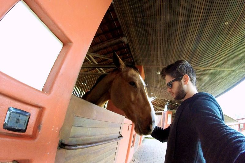 Gopro Goprooftheday Nature Horse Horseriding Horselovers Trip Traveling Travel Travel Photography