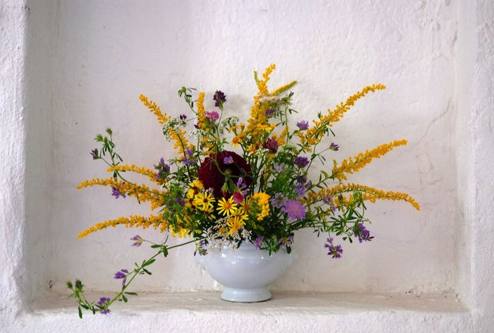 Wildflower Yellow Flower Beauty In Nature Close-up Flower Fragility Freshness Indoors  Nature Niche No People Still Life Vase Vase Decoration