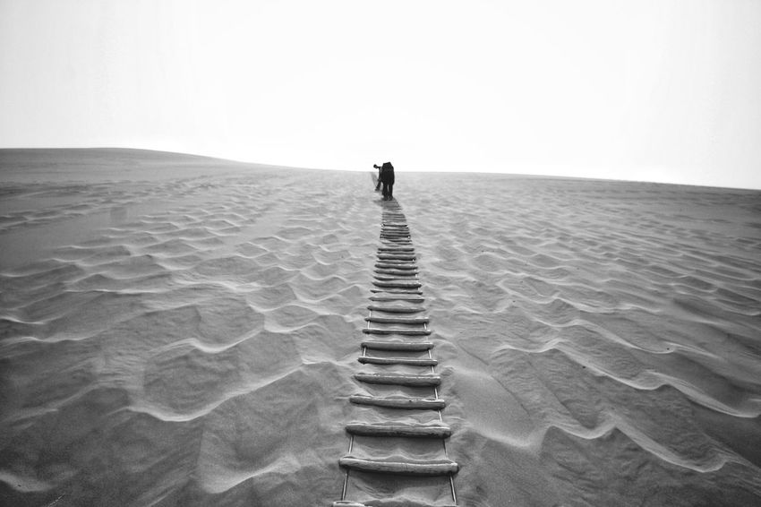 Travel Scenics Desert