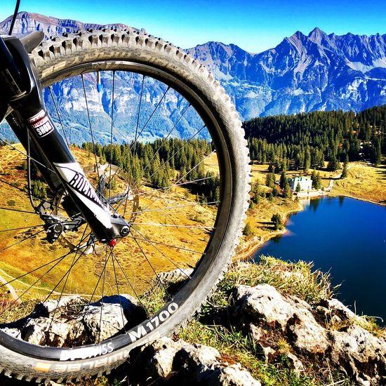 Wheel Trekking