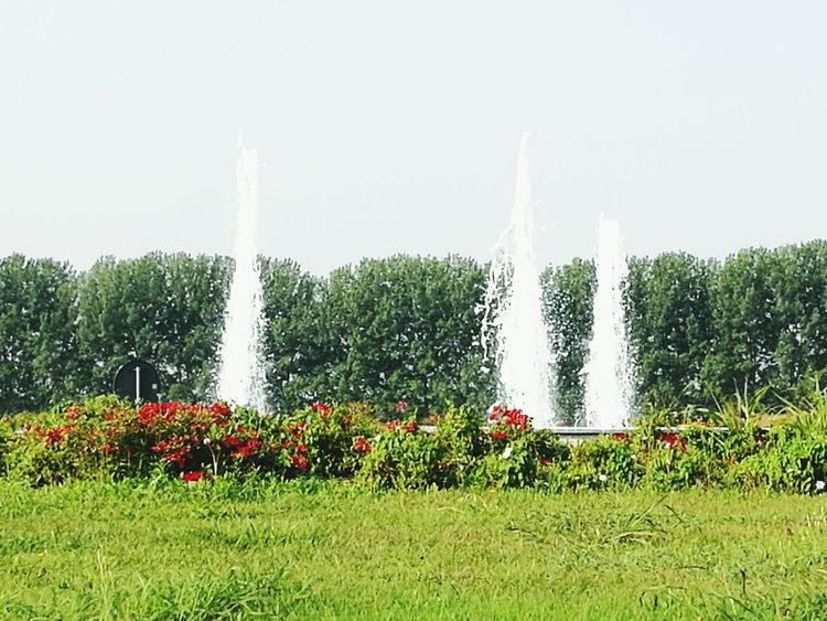 Motion Grass Spraying Fountain Copy Space Water Splashing Green Color Clear Sky Flower Waterfall Park Growth Plant Day Beauty In Nature Freshness Nature Green Scenics