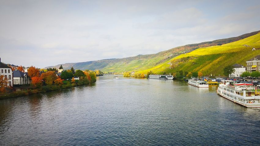 Mosel River Germany Deutschland Travel Winecountry Wanderlust Bernkastel Kues Fall Autumn