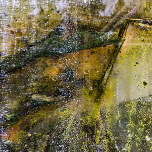 Abstract greenhouse window series 1 Abstract Photography Mold Moss Northern California Greenhouse Fineart Photographer Textured