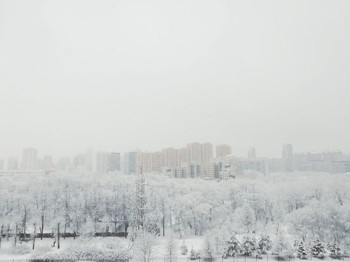 Winter Wintertime Winter Wonderland Winter Trees Winterscapes Winter_collection Snowflake Snowfall Foggy Fog Russian Nature Russian Winter зима Forest Winterscapes Urban Landscape Landscape Landscape_Collection Moscow Russia Electricity Pylon Electricity Tower Infrastructure Buildings Architecture Snowing Snow Covered Frosty Frost View From Above