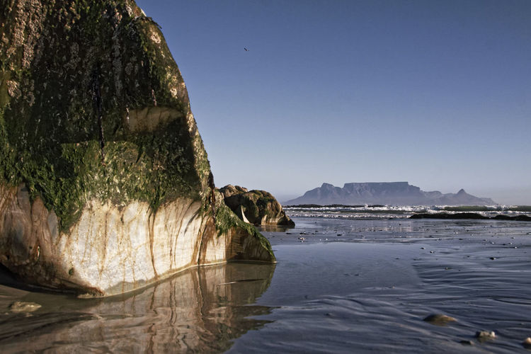 Cape Town from afar. Animal Themes Beach Beautiful Beauty Beauty In Nature Cape Town Clear Sky Day Great Landscape Mountain Nature Nice No People Outdoors Rock - Object Rock Formation Scenics Sea Sky Table Mountain Tranquil Scene Tranquility Tree Water