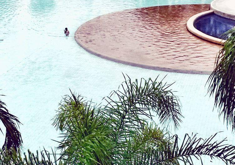 Swimming Pool Palm Tree SPFC Club Pool Summer Minimalism Minimal Minimalobsession Minimalist Architecture Minimalist Brazil Circle Blue Water Nature Day Outdoors People One Person The Graphic City EyeEmNewHere