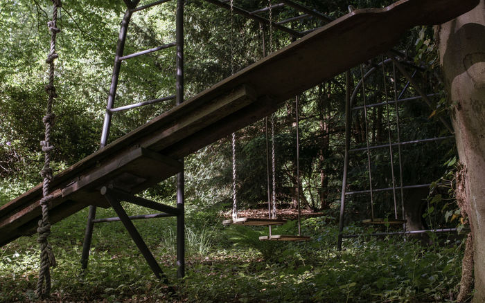 Waldspielplatz Abandoned Places Alt Day Forest Green Color Growth Klettergerüst Lostplaces Nature No People Old Outdoors Playground Schaukel Seesaw Spielplatz Swing Tree Wippe