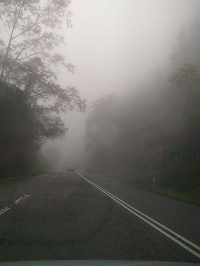 Blur Fog