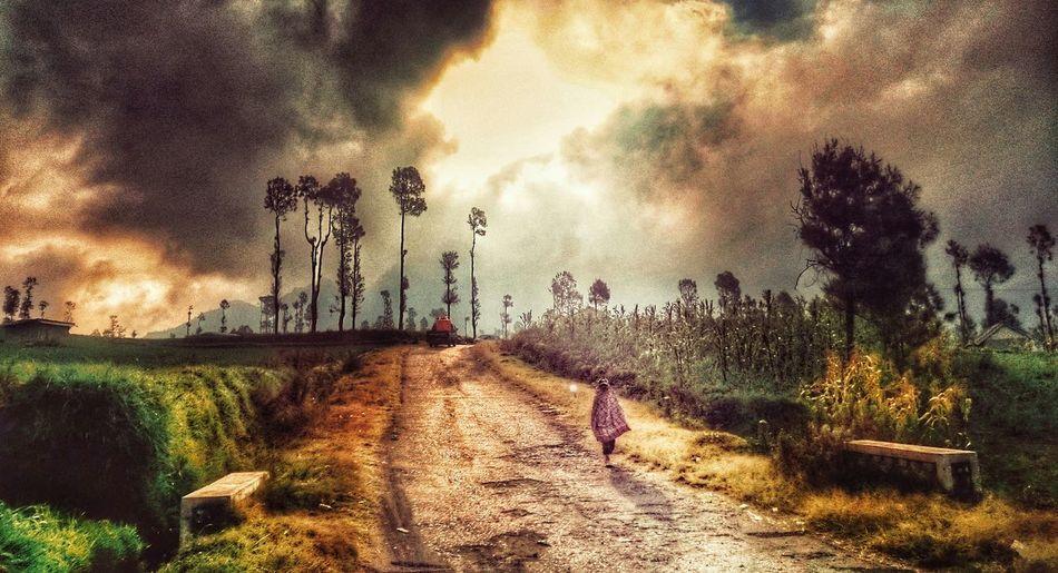 PhotoArt - Bromo, Indonesia