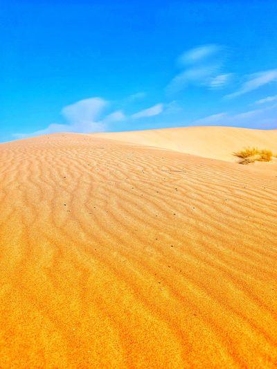 Sahara deserts and sand dunes on algeria