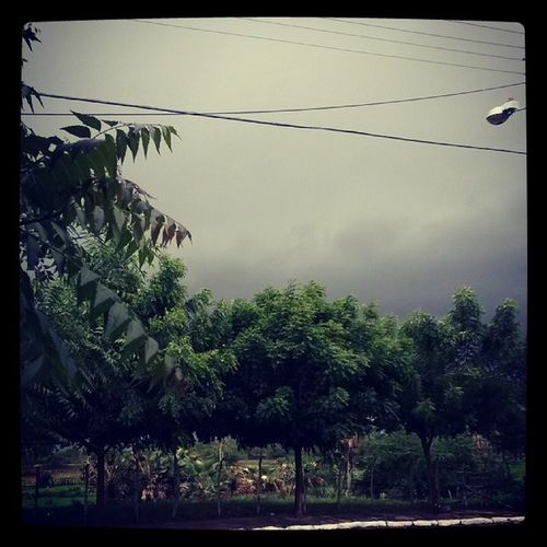 E lá vem chuva