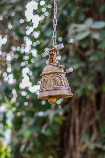 Low angle view of decoration hanging on tree