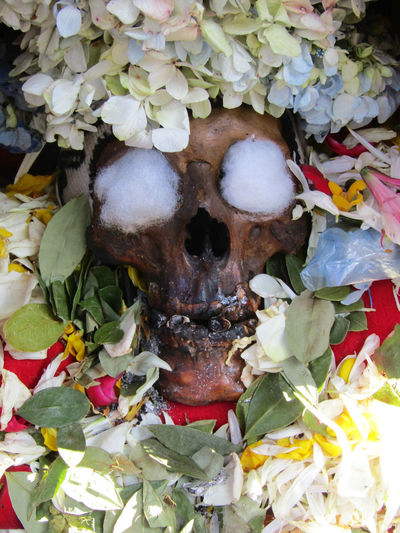 """""""Ñatita"""" @ Cementerio General, La Paz, Bolivia. """"Ñatita Day Dead Flower Petals Coca Leaves Decoration Cotton Balls No People Skull Close-up Plant Freshness Nature Beauty In Nature Petal Leaf Plant Part Vulnerability  Fragility Full Frame Outdoors Food And Drink Flower Head Solo"""