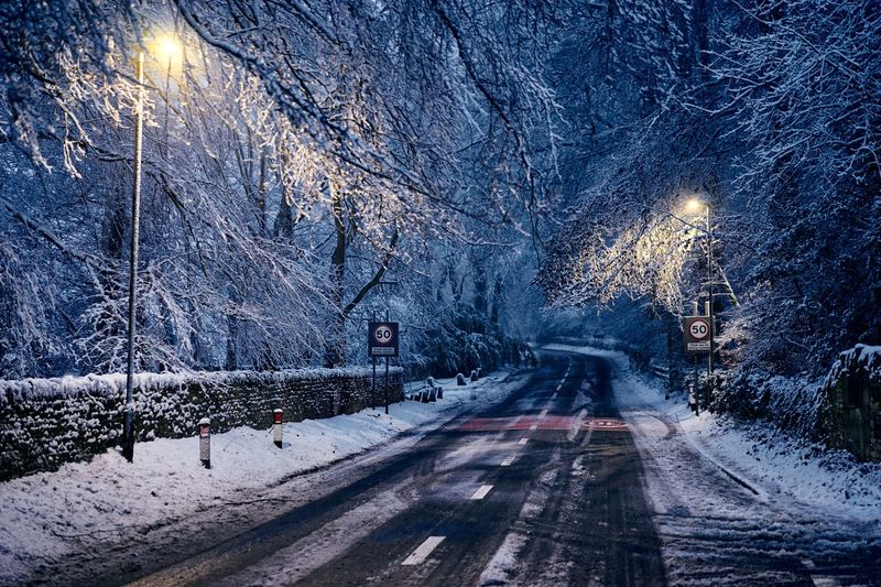 Winter wonderland in the Cotswolds Narnia  Best EyeEm Shot Streetlight Bestoftheday Wonderland Snow Winter Cold Temperature Snowing Frozen Tree Night Nature Outdoors Forest No People Road Illuminated