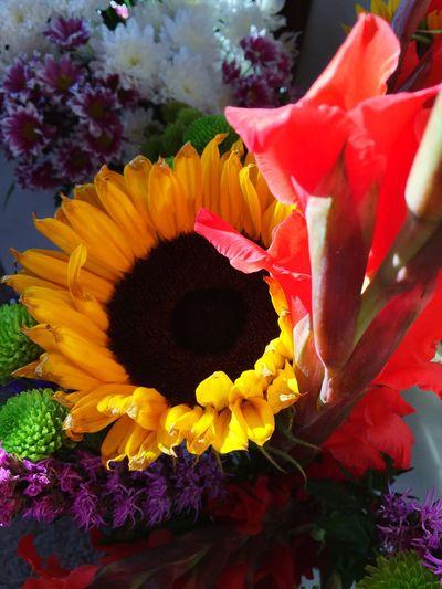 Sunflower Backendish Lastofsummer Bouquet