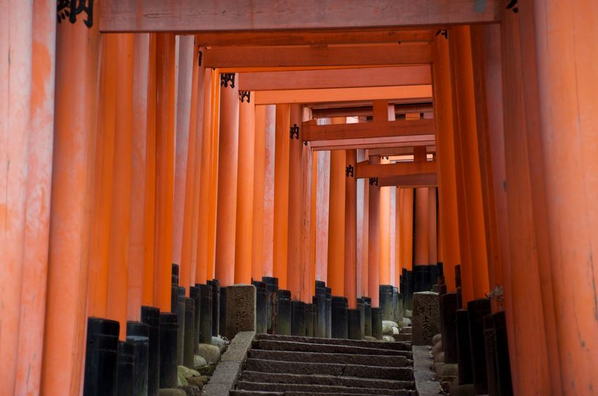Walking the vermillion shrines of Fushimi Inari-taisha in Kyoto, Japan. Architecture Orange Color Place Of Worship Spirituality Shrine Architectural Column Kyoto Japan Travel Destinations Vermillion Reverence Blessings Dedication In A Row Ancient Architecture Tourism In Awe