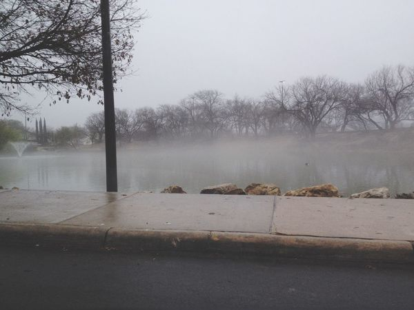 the park looked so wicked today Duckpond Ducks Hugging A Tree Relaxing Fog Foggy
