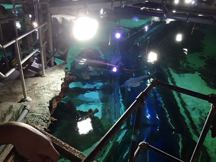 Above The Shark Tank Behind The Scenes