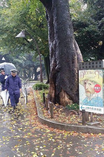 Van Gogh Art Exhibition from Detroit Institute Of Art Ueno Park Ueno Royal Museum Tokyoautumn Tokyoautumn2016 Autumn Japan