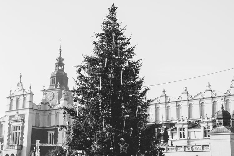 The main square in Krakow with the Sukiennice and a Christmas tree. Black And White Christmas Tree Cracow Holidays Krakow Main Square Market Square Poland Sukiennice