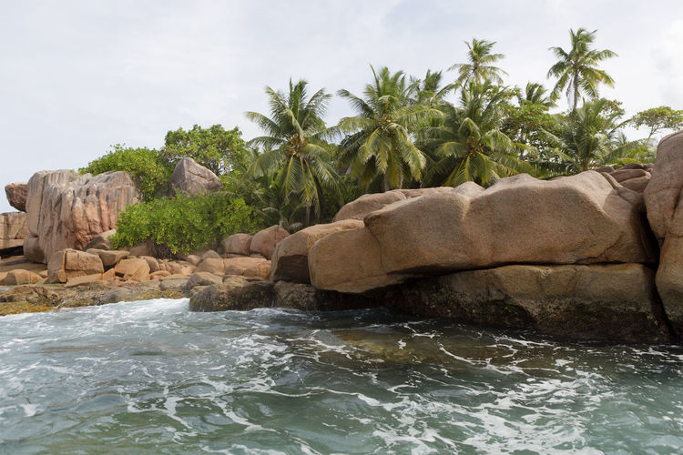 Water Nature Sky Rock Sea Palm Tree Tropical Climate Waterfront Motion Tree Rock - Object Solid Day Beauty In Nature No People Outdoors Plant Scenics - Nature Architecture Flowing Water Flowing St. Pierre, Sey Seychelles Seychelles Islands