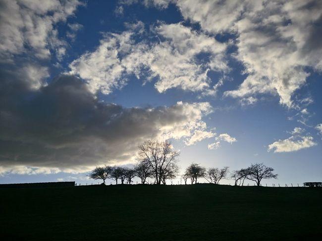 Cloud - Sky No People Outdoors Day Sky Nature Tree